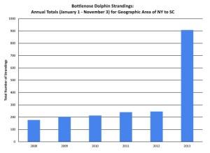 bottlenose-dolphin-strandings-chart